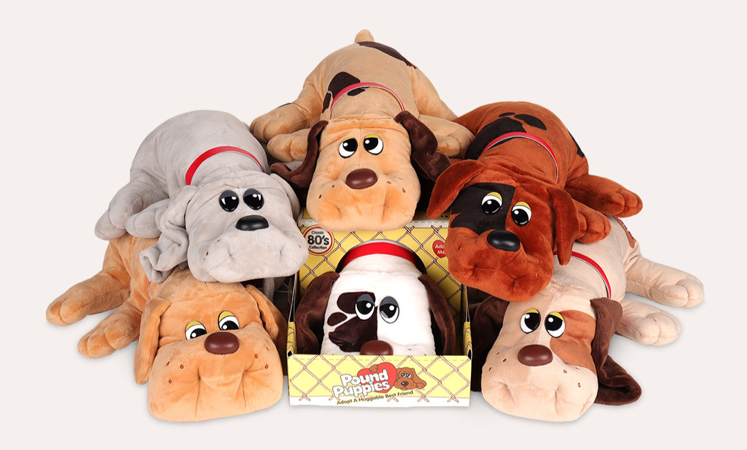 Pound Puppies | Basic Fun!